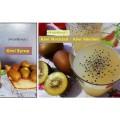 kiwi sherbet kiwi syrup
